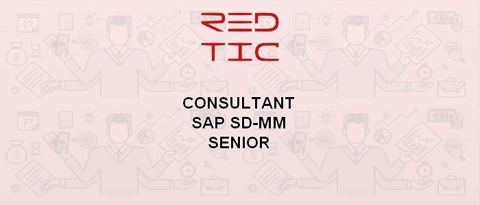 CONSULTANT SAP SD-MM SENIOR (SECTEUR DES TIC)