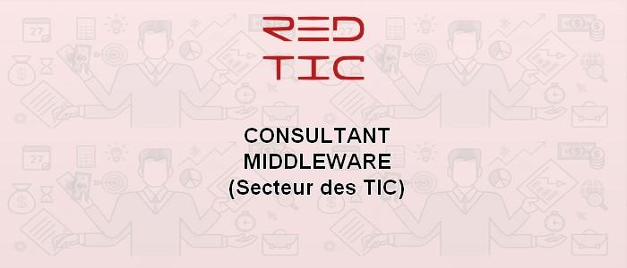 CONSULTANT MIDDLEWARE (Secteur des TIC)