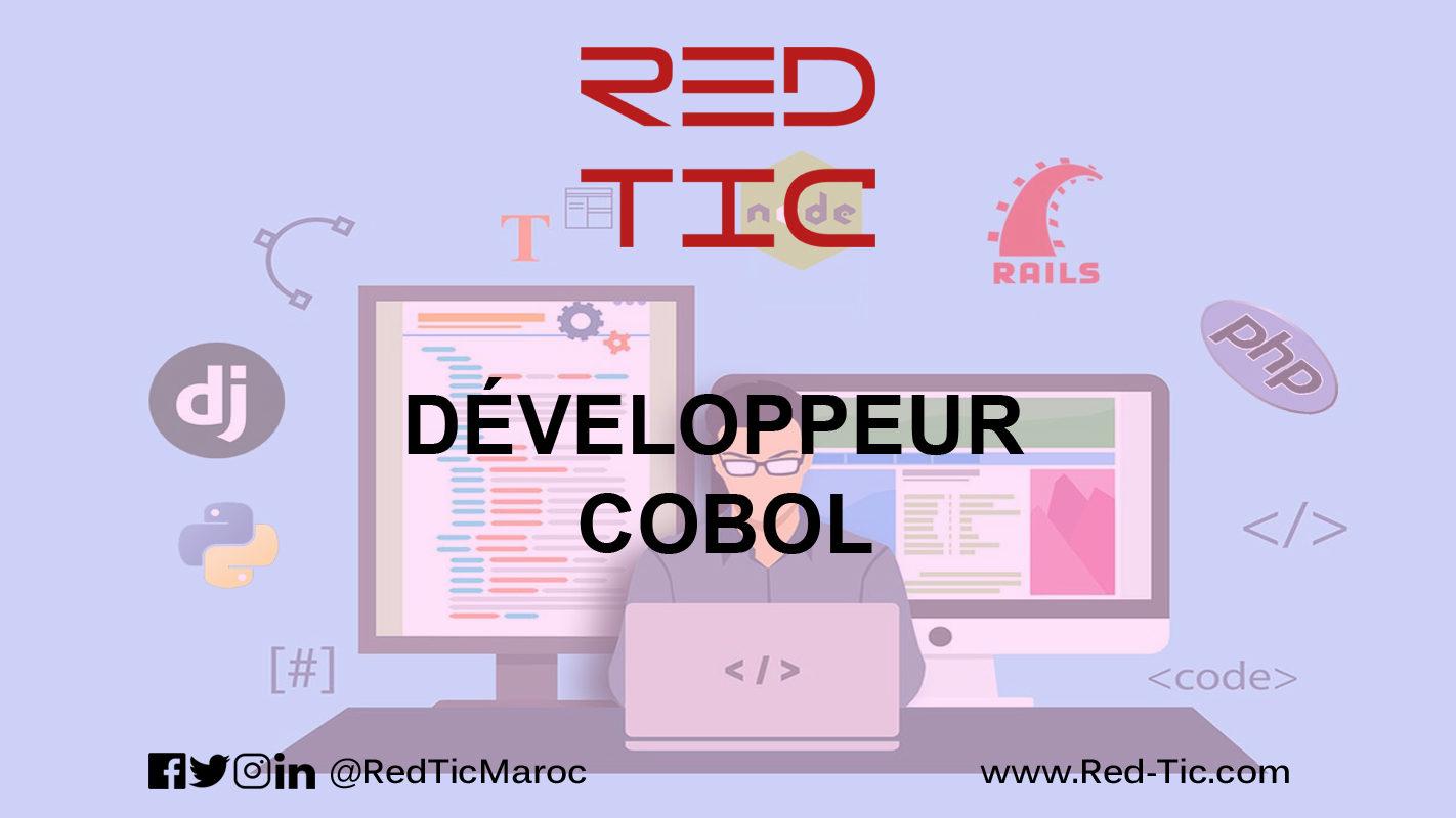 DÉVELOPPEUR COBOL (5 ANS D'EXPÉRIENCE)