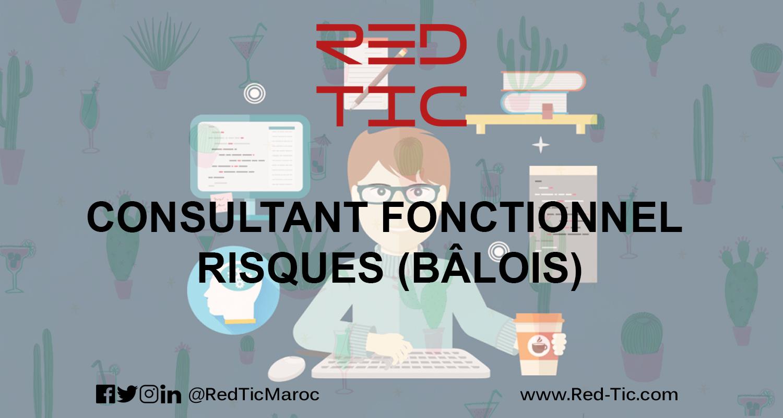 CONSULTANT FONCTIONNEL RISQUES (BÂLOIS)