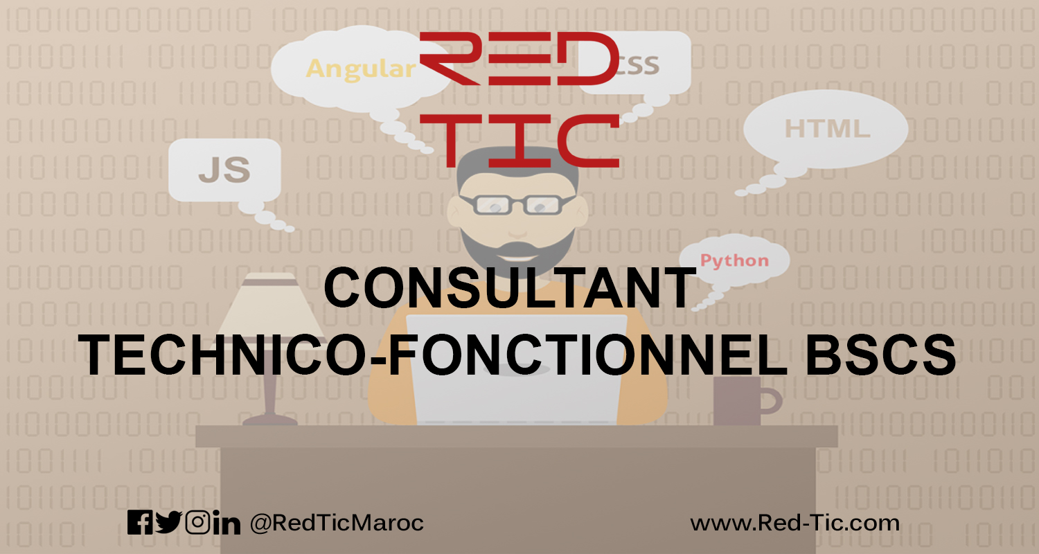 CONSULTANT TECHNICO-FONCTIONNEL BSCS