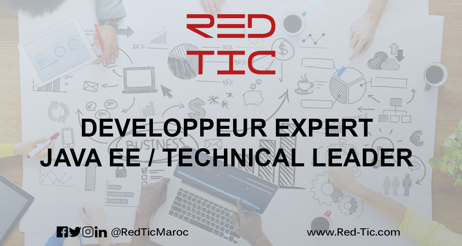 DEVELOPPEUR EXPERT JAVA EE / TECHNICAL LEADER