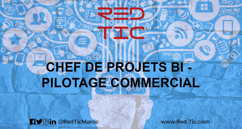 CHEF DE PROJETS BI – PILOTAGE COMMERCIAL