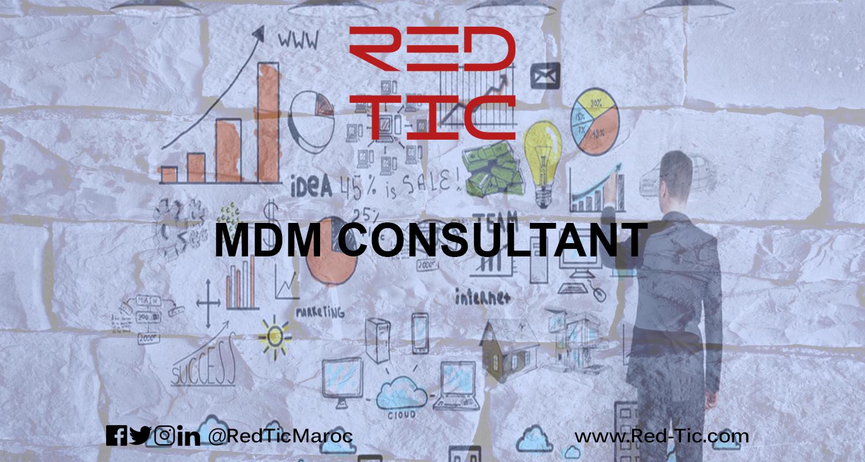 MDM CONSULTANT
