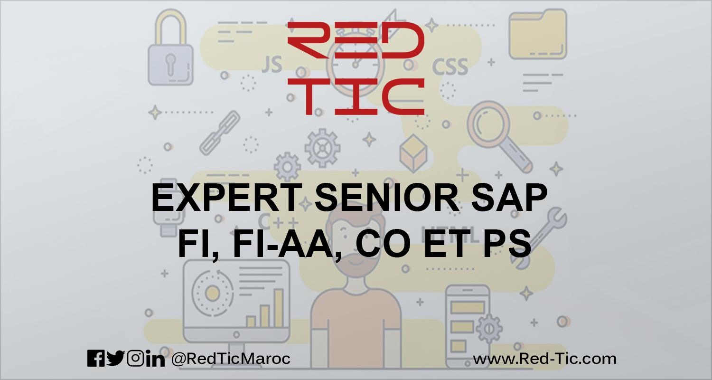 EXPERT SENIOR SAP FI, FI-AA, CO et  PS
