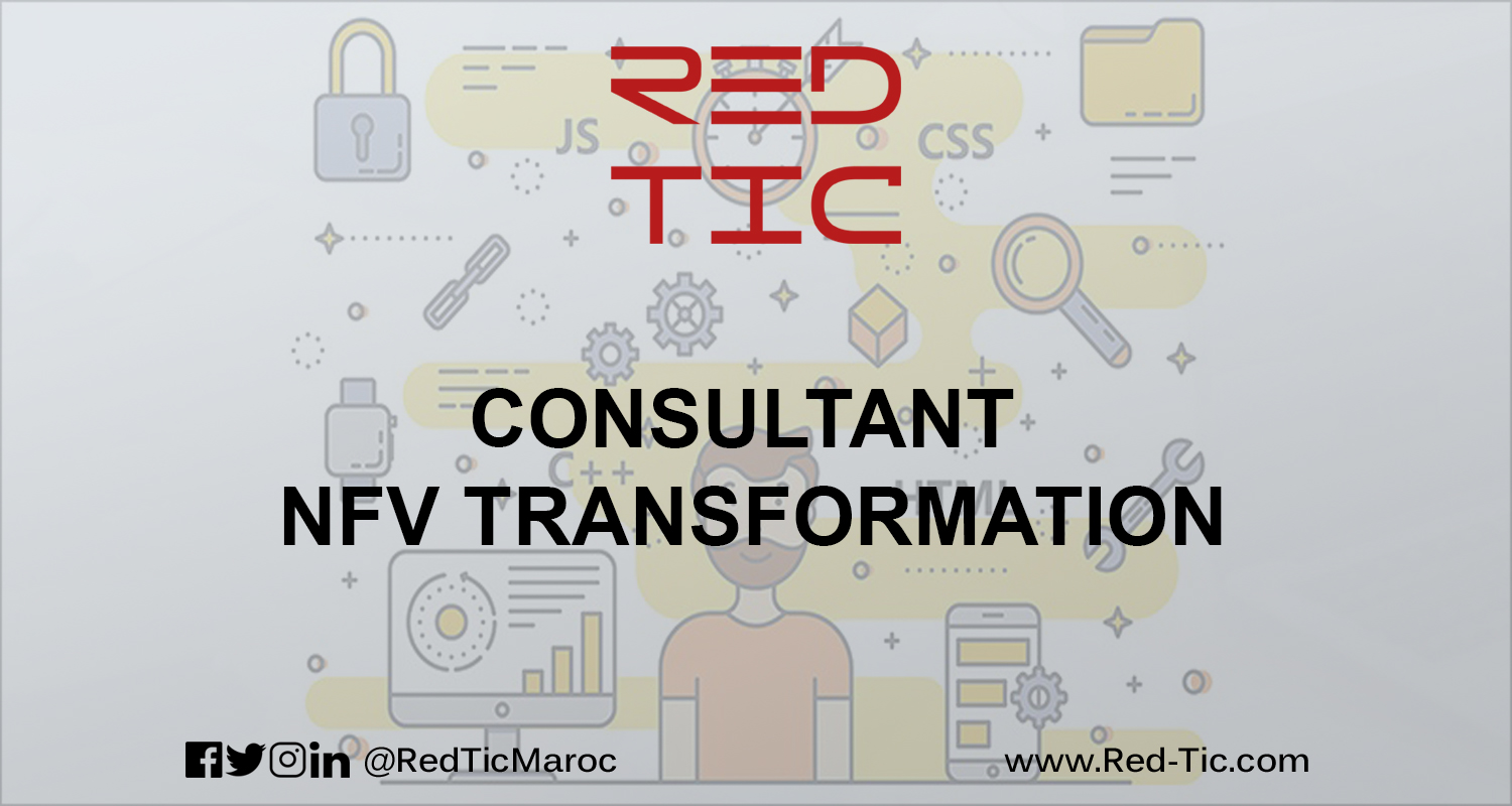 CONSULTANT NFV TRANSFORMATION