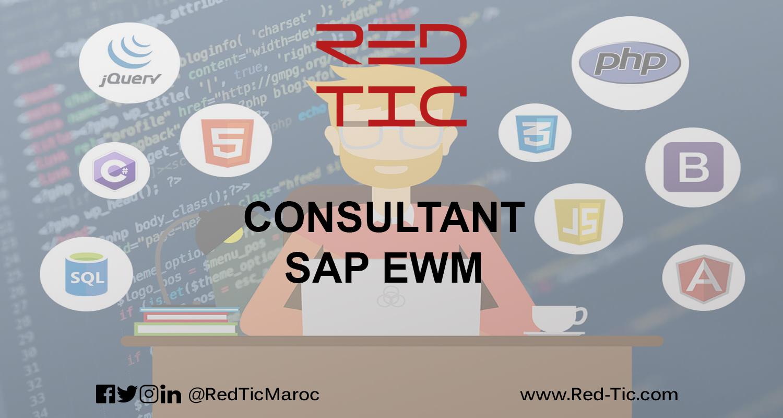 CONSULTANT SAP EWM