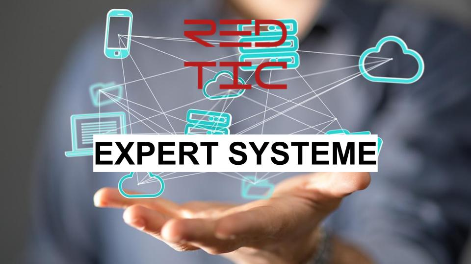 EXPERT SYSTEME