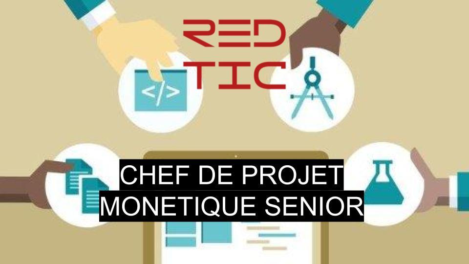 CHEF DE PROJET MONETIQUE SENIOR
