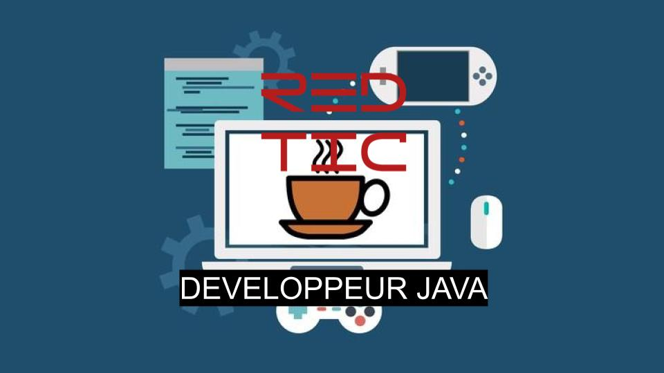 DEVELOPPEUR JAVA