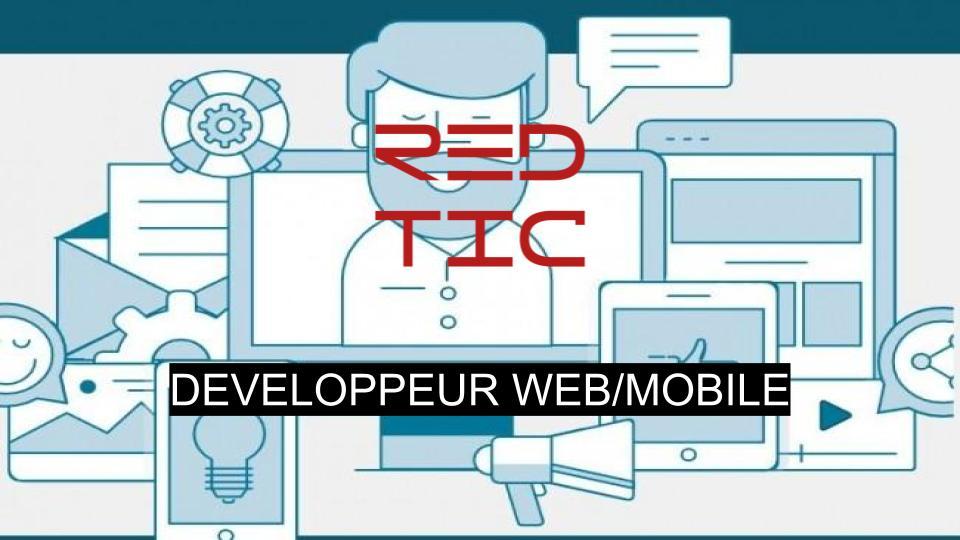 DEVELOPPEUR WEB/MOBILE