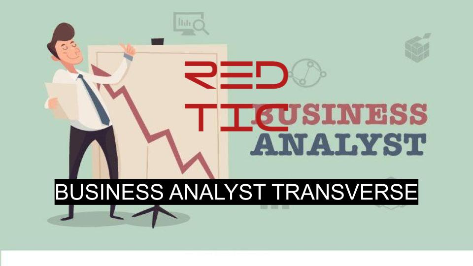 BUSINESS ANALYST TRANSVERSE
