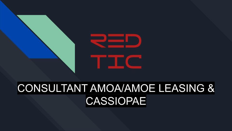 CONSULTANT AMOA/AMOE LEASING & CASSIOPAE