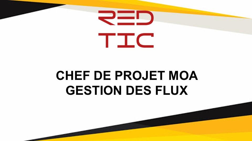 CHEF DE PROJET MOA GESTION DES FLUX