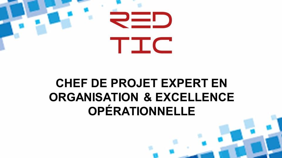 CHEF DE PROJET EXPERT EN ORGANISATION ET EXCELLENCE OPÉRATIONNELLE