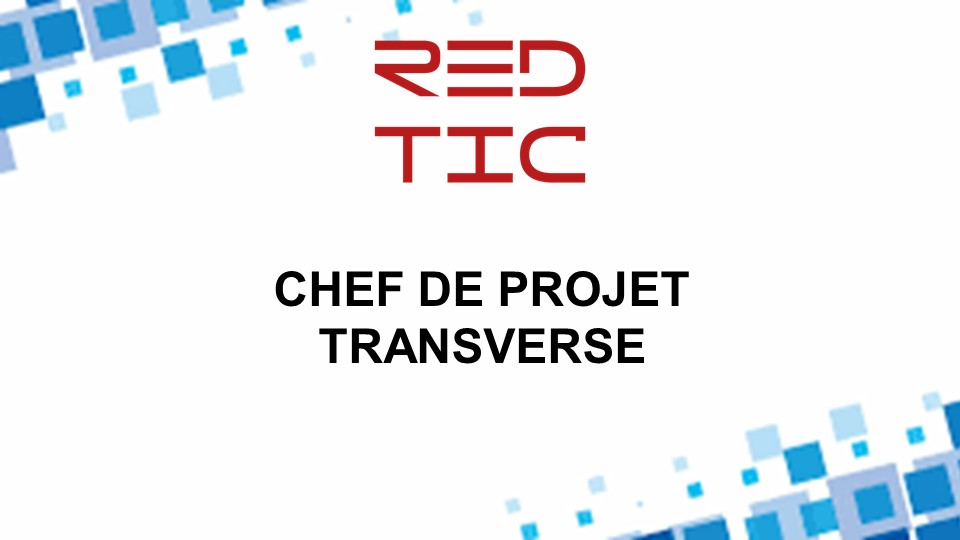 CHEF DE PROJET TRANSVERSE
