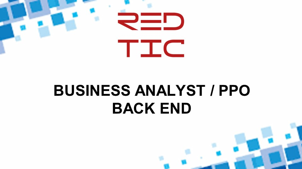 BUSINESS ANALYST / PPO BACK END