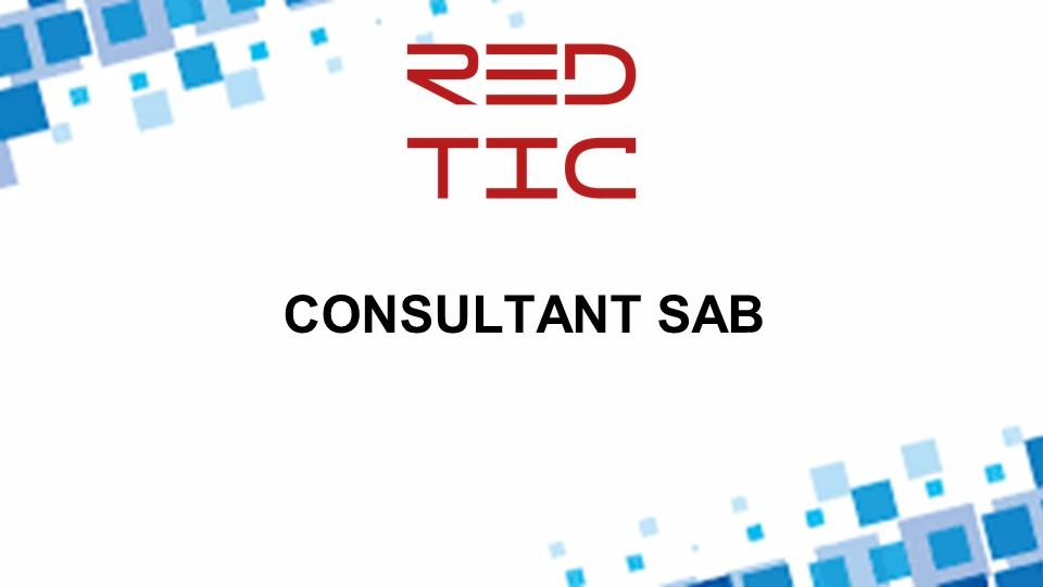 CONSULTANT SAB