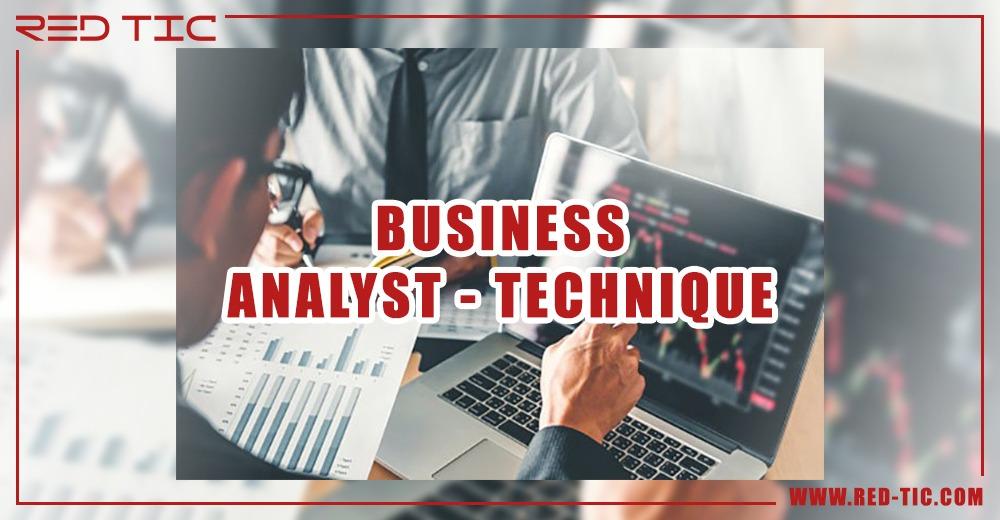 BUSINESS ANALYST – TECHNIQUE