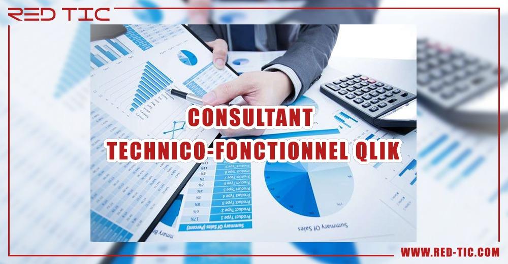 CONSULTANT TECHNICO FONCTIONNEL QLIK