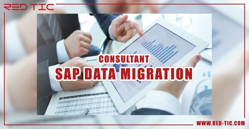 CONSULTANT SAP DATA MIGRATION (LSMW/LTMC/DATA SERVICES)