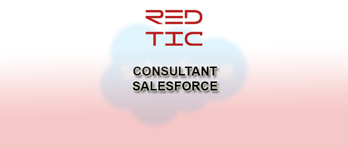 CONSULTANT SALESFORCE SENIOR