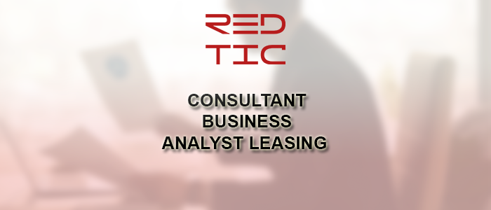 CONSULTANT BUSINESS ANALYST LEASING