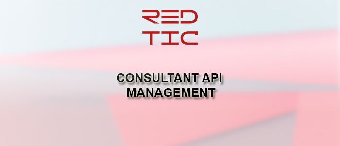 CONSULTANT API MANAGEMENT
