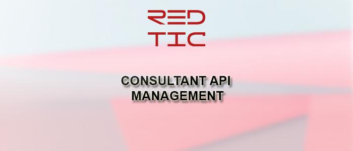 CONSULTANT API MANAGEMENT